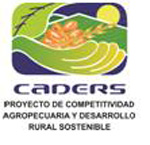 caders